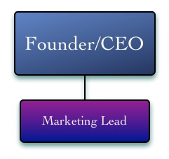 Sales & Marketing Org Structures-Marketing