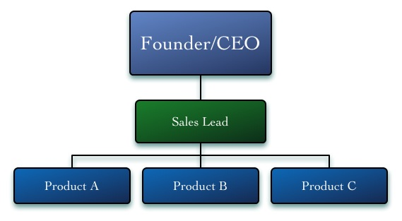 Sales & Marketing Org Structures- Product Specialsts