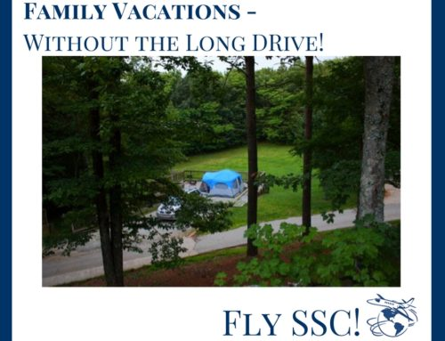 Private Jet Charter for Affordable Family Vacations Without the Airlines (Or A Long Drive!)