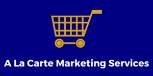 Aviation Sales and Marketing Services