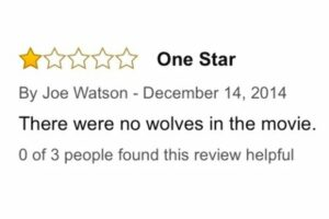 Review - Wolves of Wall Street