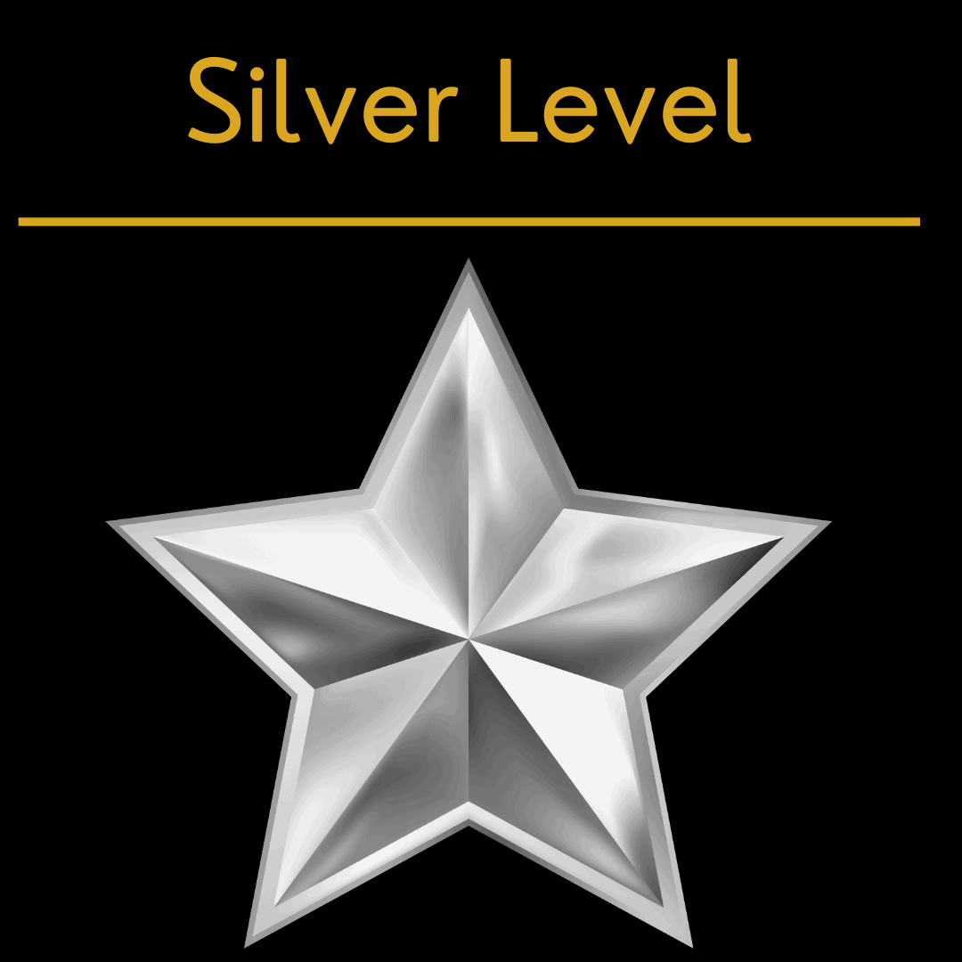 aviation marketing silver