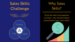 Why Aviation Industry Professionals Need Sales Skills